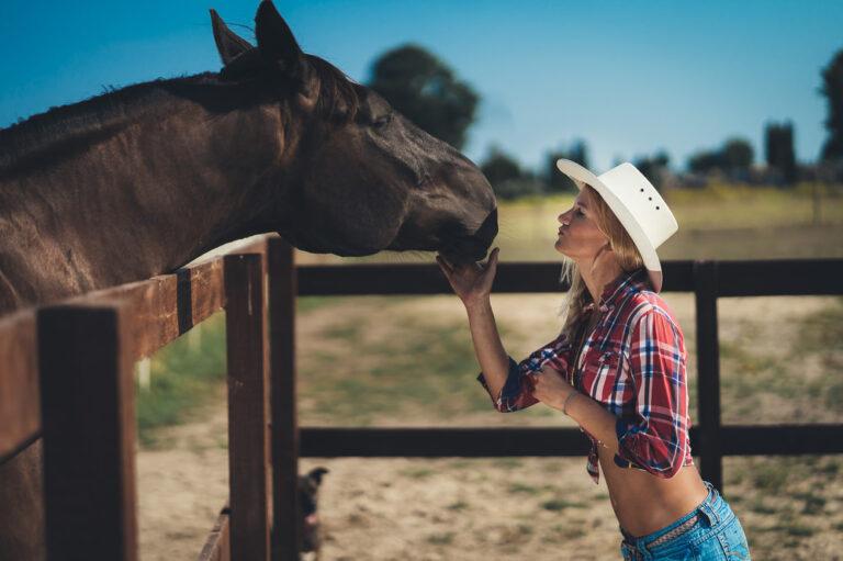 Zdjęcia koń modelka fotograf konie